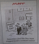 Gender pay gap (c) Matt Daily Telegraph Feb 2016